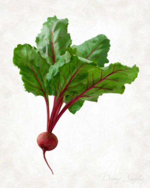 Wall Art - Painting - Beet by Danny Smythe