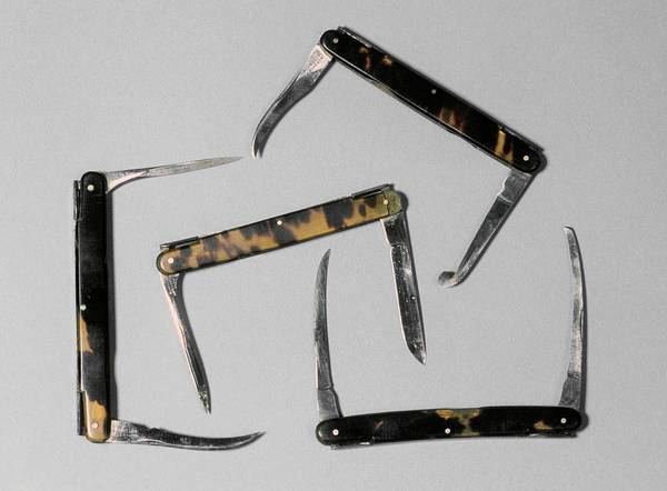 Tortoiseshell Photograph - Bistoury Knives by Science Photo Library