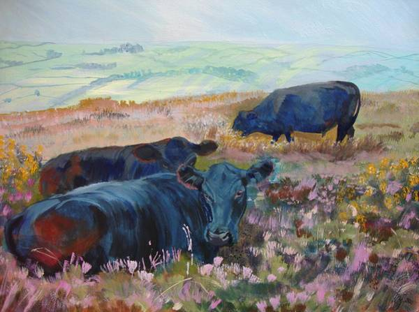 Painting - Black Cows On Dartmoor by Mike Jory