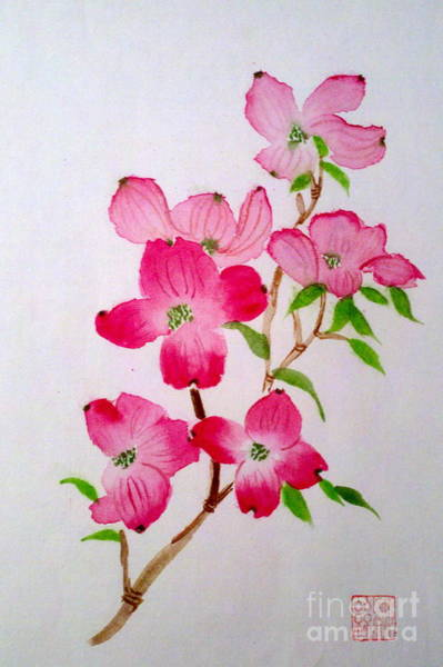 Painting - Blooming Dogwood by Margaret Welsh Willowsilk