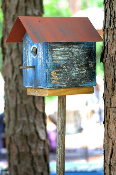 Photograph - Blue Birdhouse by Gordon Elwell