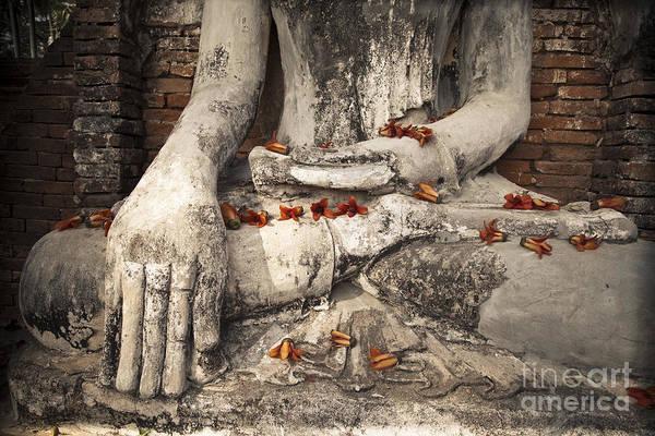 Photograph - Buddha by Maria Heyens