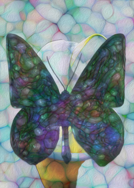 Merge Painting - Butterfly by Jack Zulli