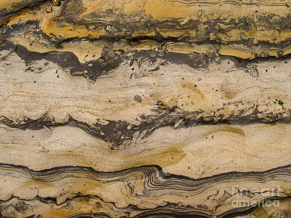 Photograph - California Rocks by Steven Ralser