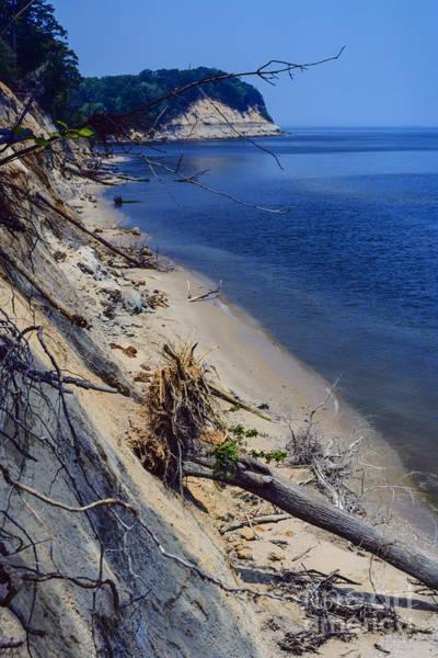 Photograph - Calvert Cliffs State Park by Thomas R Fletcher