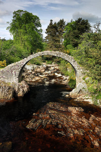 Photograph - Carrbridge by Grant Glendinning