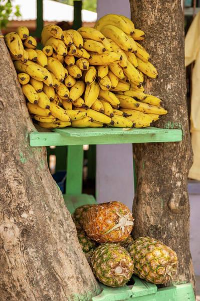 Roatan Photograph - Central America, Honduras, Roatan, West by Lisa S. Engelbrecht