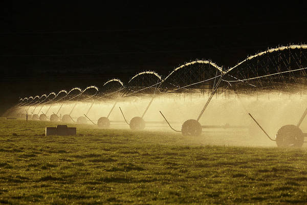 Wall Art - Photograph - Centre Pivot Irrigation, South by David Wall