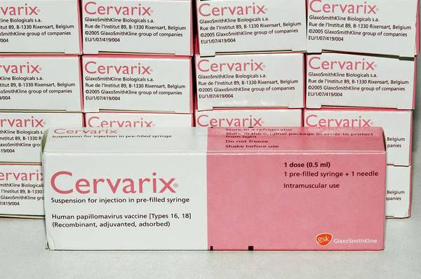 Package Wall Art - Photograph - Cervarix Hpv Vaccine For Cervical Cancer by Dr P. Marazzi/science Photo Library