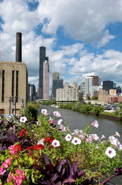 Alan Photograph - Chicago Skyline And River Looking North by Alan Klehr