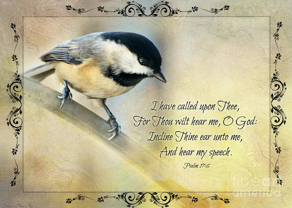 Wall Art - Photograph - Chickadee With Verse by Debbie Portwood