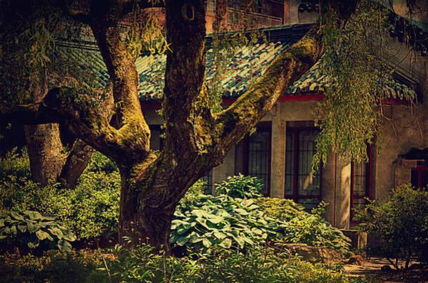 Moss Digital Art - Chinese Garden by Maria Angelica Maira