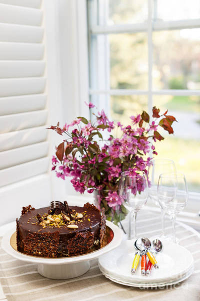 Wall Art - Photograph - Chocolate Cake by Elena Elisseeva