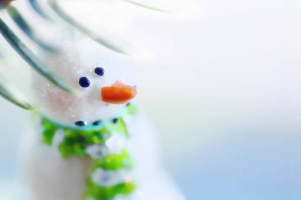 Snowman Photograph - Christmas Decoration by Maria Mosolova/science Photo Library