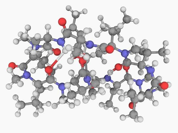Wall Art - Photograph - Ciclosporin Drug Molecule by Laguna Design/science Photo Library