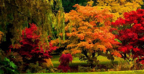 Photograph - Colors Of Autumn - Seasons Art by Jordan Blackstone