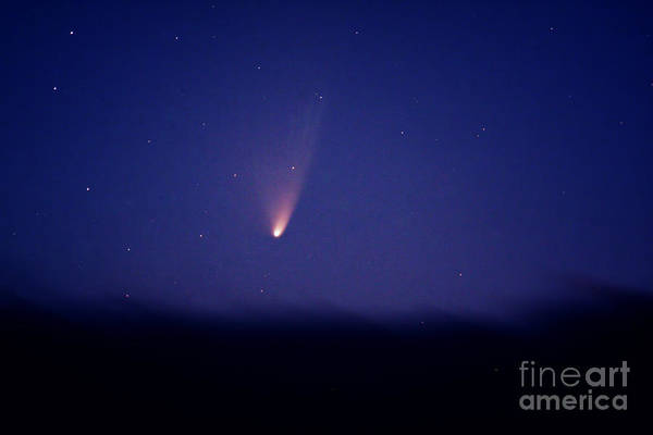 Warrenton Wall Art - Photograph - Comet Panstarrs C2011 L4 by John Chumack