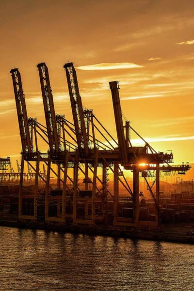 Wall Art - Photograph - Container Port by John Greim/science Photo Library