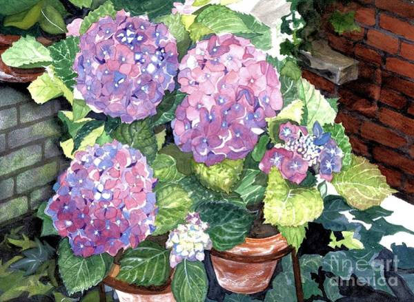 Wall Art - Painting - Corner Garden by Barbara Jewell