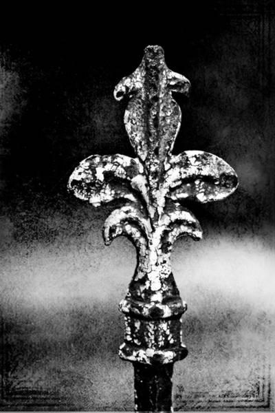 Fleur De Lis Photograph - Court Jester - Bw Texture by Scott Pellegrin
