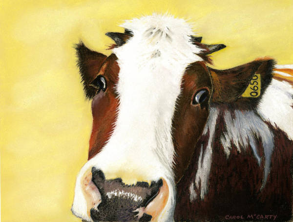 Hereford Bull Painting - Cow No. 0650 by Carol McCarty