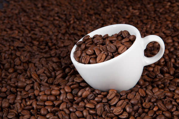 Photograph - Cup Of Coffee Beans by Raimond Klavins