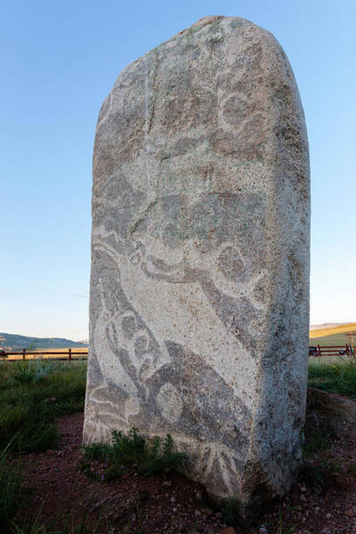 Ruminant Photograph - Deer Stones With Inscriptions, 1000 Bc by Tom Norring