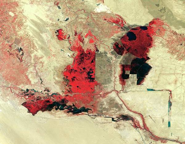 Iraqi Photograph - Disappearing Iraqi Marshlands by Nasa/science Photo Library