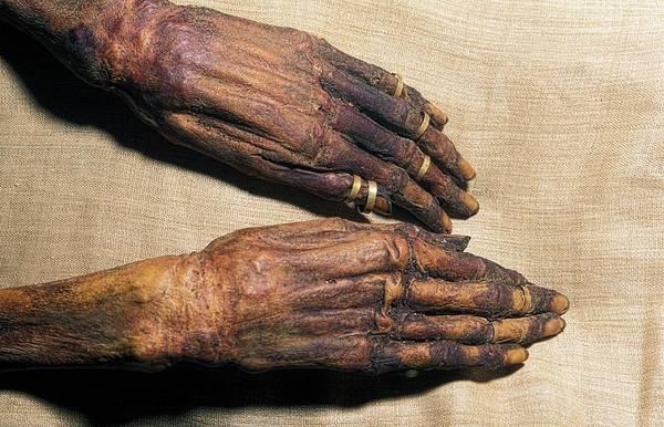 Wall Art - Photograph - Djedptahiufankh Mummy by Patrick Landmann/science Photo Library
