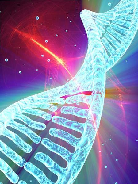3d Visualization Photograph - Dna by Alfred Pasieka