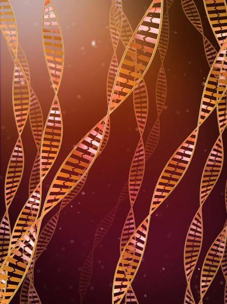 Genetic Information Wall Art - Photograph - Dna Molecules by Maurizio De Angelis