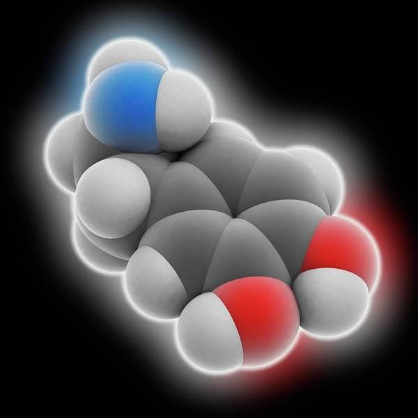Neurotransmitter Wall Art - Photograph - Dopamine Molecule by Laguna Design