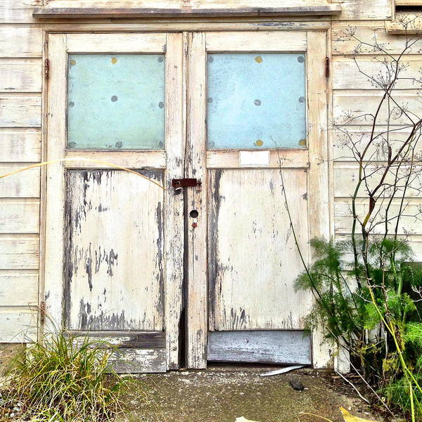 Wall Art - Photograph - Double Doors by Julie Gebhardt