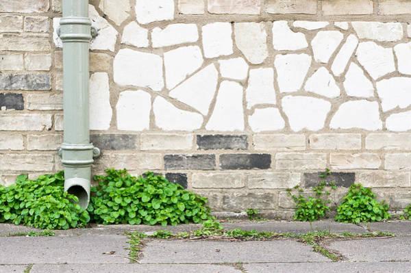 Drainage Photograph - Drainpipe by Tom Gowanlock