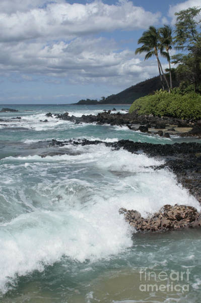Photograph - E Lei Kau E Lei Hoolilo I Ke Aloha Paako by Sharon Mau