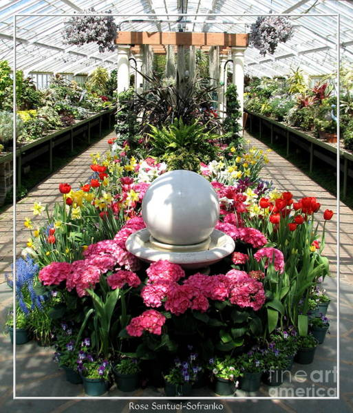 Photograph - Easter Spring Flower Show At Botanical Gardens by Rose Santuci-Sofranko