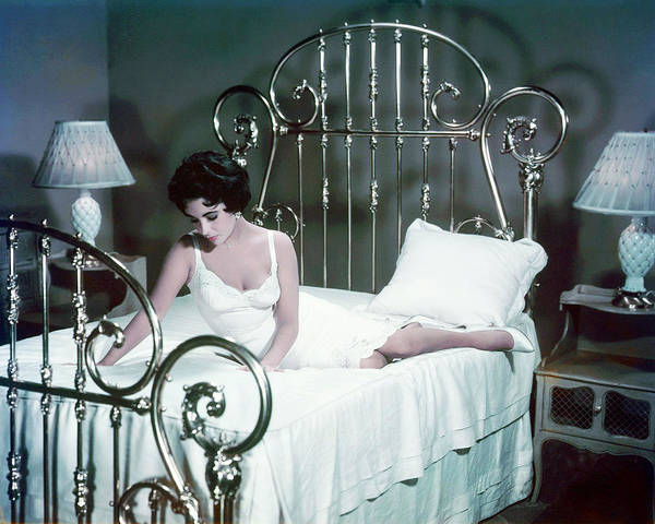 Tin Roof Wall Art - Photograph - Elizabeth Taylor In Cat On A Hot Tin Roof  by Silver Screen