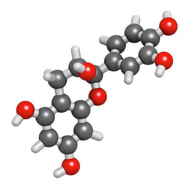 Wall Art - Photograph - Epicatechin Chocolate Flavonoid Molecule by Molekuul