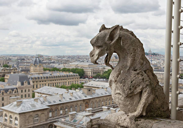 Stone Carving Photograph - Europe, France, Paris by Charles Sleicher