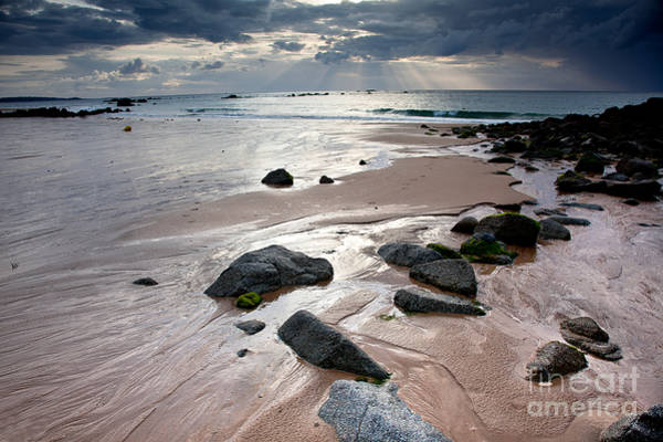 Destination Wall Art - Photograph - Evening At The Sea by Nailia Schwarz
