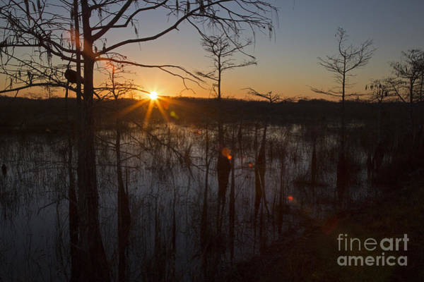 Photograph - Everglades Sunrise by Jim West