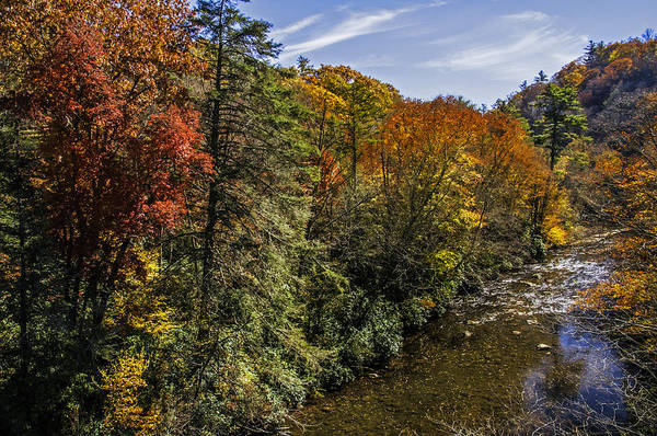 Photograph - Fall Along The Linville River by Lynn Bauer