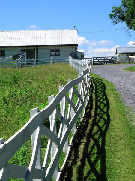 Photograph - Farm And Fence by Frank Romeo