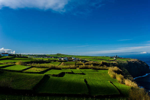 Photograph - Fields Of Green And Yellow by Joseph Amaral