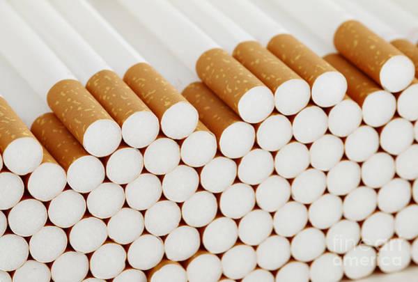 Wall Art - Photograph - Filter Cigarettes by Michal Boubin