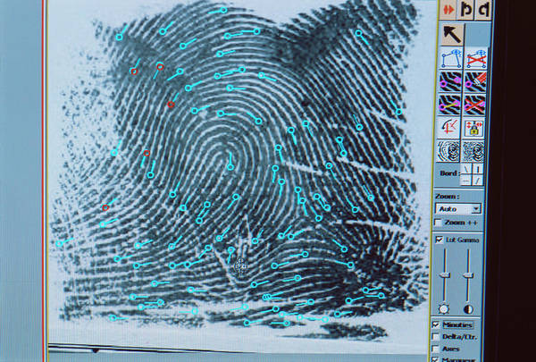Wall Art - Photograph - Fingerprint Analysis by Philippe Psaila/science Photo Library