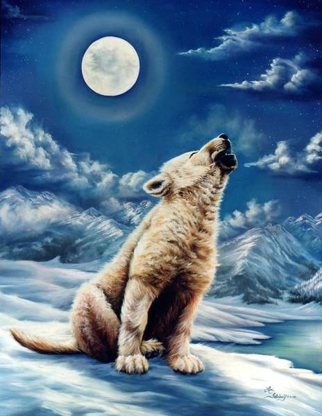 Arctic Wolf Painting - First Solo by Lori Salisbury