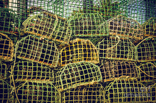 Lobster Photograph - Fishing Traps by Carlos Caetano