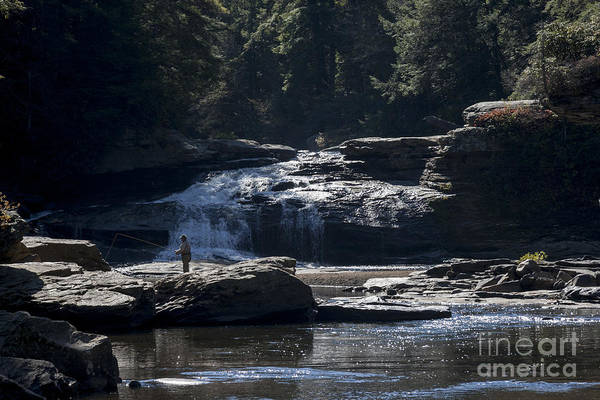 Photograph - Fly Fishing At Swallow Falls In Maryland by William Kuta