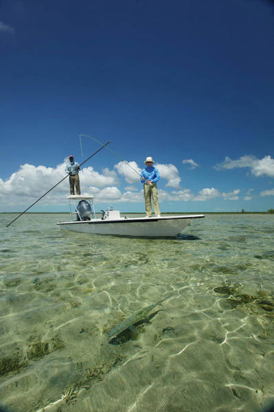 Andros Photograph - Fly Fishing In The Bahamas by Mark Lance